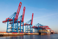 Container cranes in the port of Hamburg, Germany Royalty Free Stock Images