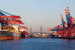 Container cranes in the port of Hamburg, Germany Royalty Free Stock Photo