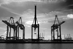 Container cranes Rotterdam harbour Royalty Free Stock Photography