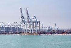 Container cranes Stock Images