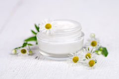 Container with cream and chamomiles Stock Image