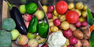 Container with different vegetables and fruits. Apples, aubergine, pepper, potatoes, carrots, cabbage stock image