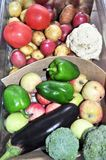 Container with different vegetables and fruits. Apples, aubergine, pepper, potatoes, carrots, cabbage royalty free stock images