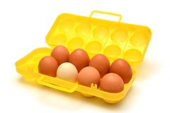 Container for eggs Stock Image