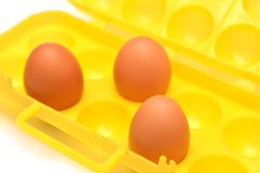 Eggs container Royalty Free Stock Photos