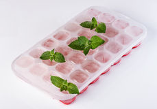 Container for freezing ice. Ice mint  cold  white   cube square  cool  container  freezer  shape  solid  plastic  water  form closeup photography  utensil Royalty Free Stock Photography