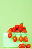 Container with fresh tomatoes Royalty Free Stock Photography