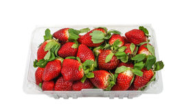 Container full with fresh Strawberries Stock Photography