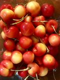 A container of golden Rainer cherries Stock Photography