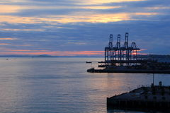 Container Habor Royalty Free Stock Image