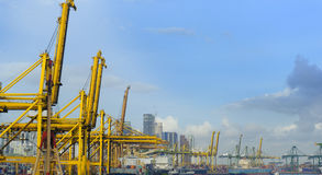 Container lifts at port of Singapore Stock Photos