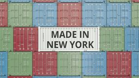 Container with MADE IN NEW YORK text. Import or export related 3D animation stock video