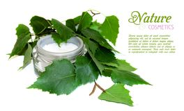 Container of natural cream and fresh birch brunch with green lea. Ves isolated on white background with place for text Feminine, natural beauty and cosmetics stock photos