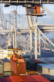 Container operation in port. Royalty Free Stock Photos