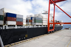 Container operation in port with cranes and gantry loading / discharging containers Royalty Free Stock Photos