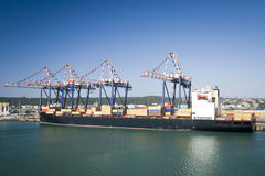 Container operation in port with cranes and gantry loading / discharging containers Stock Photography