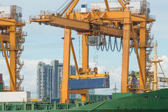 Container operation in sea port Stock Image