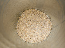 Container of pearl barley closeup Stock Image