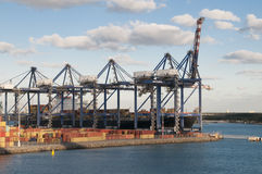 Container Port Cranes Royalty Free Stock Images