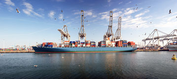 Container ship. Large bulk carrier moored off at the Rotterdam Harbor, being unloaded of its containers by large cranes Stock Image