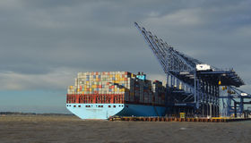 Container ship being unloaded at Felixstowe docks suffolk Royalty Free Stock Photos