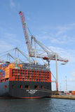 Container ship and crane Royalty Free Stock Images