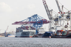 Container ship in Hamburg, Germany, editorial. Hamburg, Germany - july 5: Giant ship in container harbor with tall cranes in Hamburg Harbor, Germany on july 5 Stock Photography