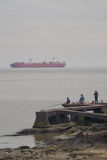 Container ship on Rio de la Plata Stock Photography