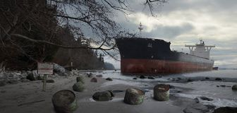 Container Ship Stranded On Beach vector illustration