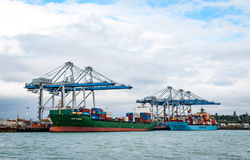 Container ships and cranes in Auckland, New Zealand Royalty Free Stock Images