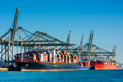 Container Ships docked in Rotterdam Harbour Royalty Free Stock Images