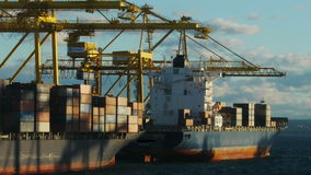 Container ships stock video