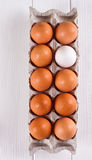 Container of ten eggs. Nine eggs brown one egg white. Royalty Free Stock Images