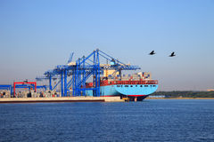 Container terminal Royalty Free Stock Photos