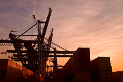 Container terminal. Gantry cranes at recent dock in port of antwerp Royalty Free Stock Photo