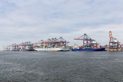 Container terminal in Dutch harbor Rotterdam with cargo ships moored stock photos