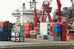 Container terminal in the Port of Rotterdam Stock Image
