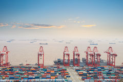 Container terminal with sunset glow Royalty Free Stock Images