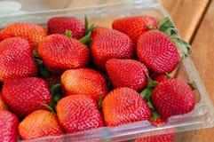 Container van Sappige Rode Aardbeien Royalty-vrije Stock Afbeeldingen