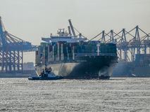 Ship arriving in the Port of Hamburg. Container vessel `Ever Charming` of Evergreen berthing in the Port of Hamburg stock photography