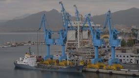 Containerhaven met vastgelegd vrachtschip in kuststad stock video