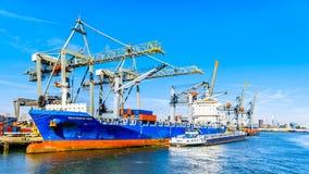 Containerkranen op de kaden van Waalhaven in Rotterdam, Holland stock afbeeldingen