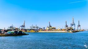 Containerkranen op de kaden van Waalhaven in Rotterdam, Holland royalty-vrije stock foto's
