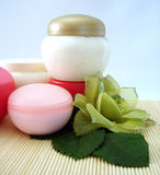Containers of cosmetic moisturizing cream with green flower Royalty Free Stock Photography