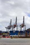 Containers and cranes in the port of Montevideo Royalty Free Stock Image