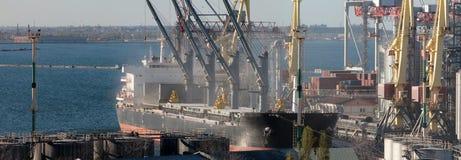 Containers die door kraan, Handelshaven, het Verschepen laden royalty-vrije stock afbeelding
