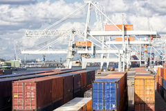 Containers stacked at harbor Royalty Free Stock Photography
