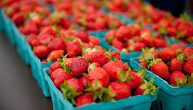 Containers of strawberries at a farmers market royalty free stock image
