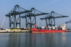 Containerschiff im Hafen von Zeebrugge-Seabruges. Lizenzfreies Stockbild