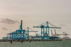 Containership på apmterminalen Fotografering för Bildbyråer
